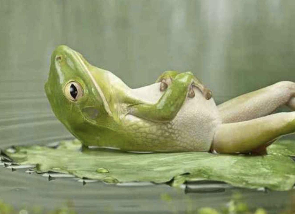 Как стать спокойным человеком и найти свой дзен? Три метода успокоения фото 2
